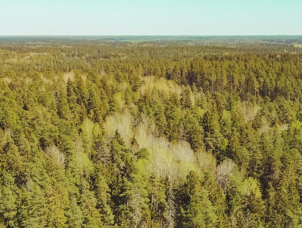 Mežsaimniecība un mežsaimniecības tehnika